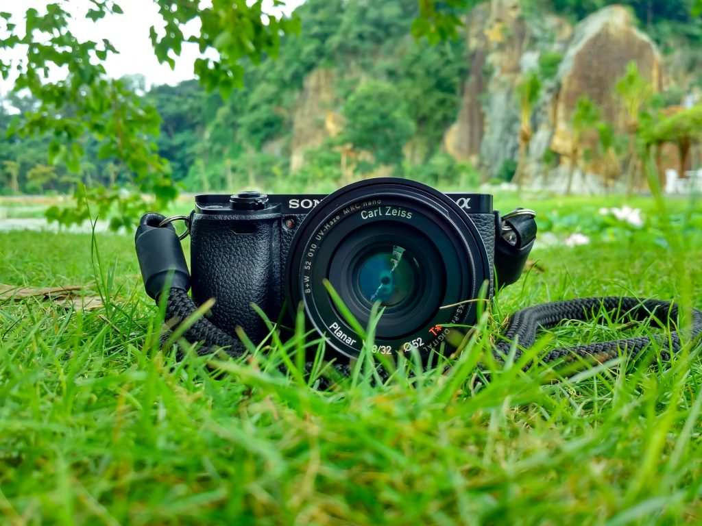 Sony Camera sitting in the grass, sense pointing towards the viewer