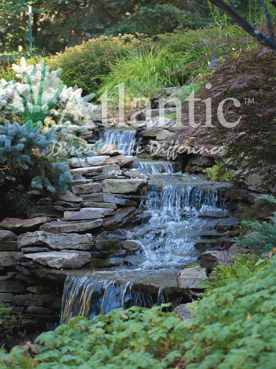 Find A Contractor >> Galleries | Pond-free | Atlantic Water Gardens