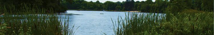 Pond & Lake